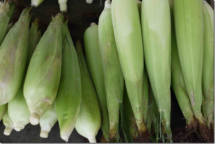 Fresh corn at Brinchang markets, Cameron Highlands