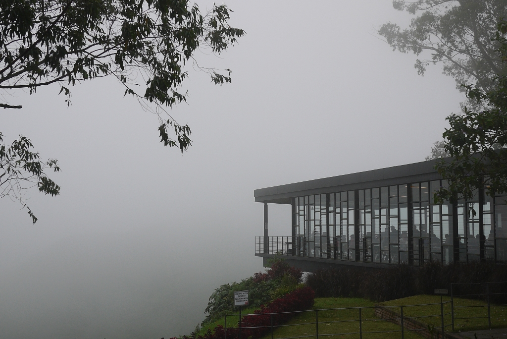 Mist over cafe at Boh Plantations