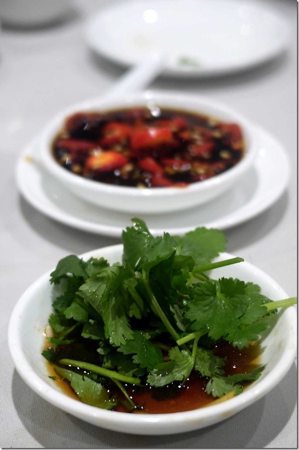 Coriander and ginger dipping sauce & chilli and soy sauce