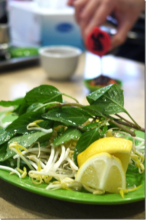 Fresh beansprouts and mint