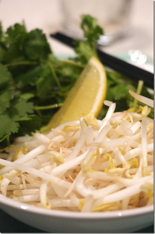 Raw beansprouts, lemon wedge and fresh coriander