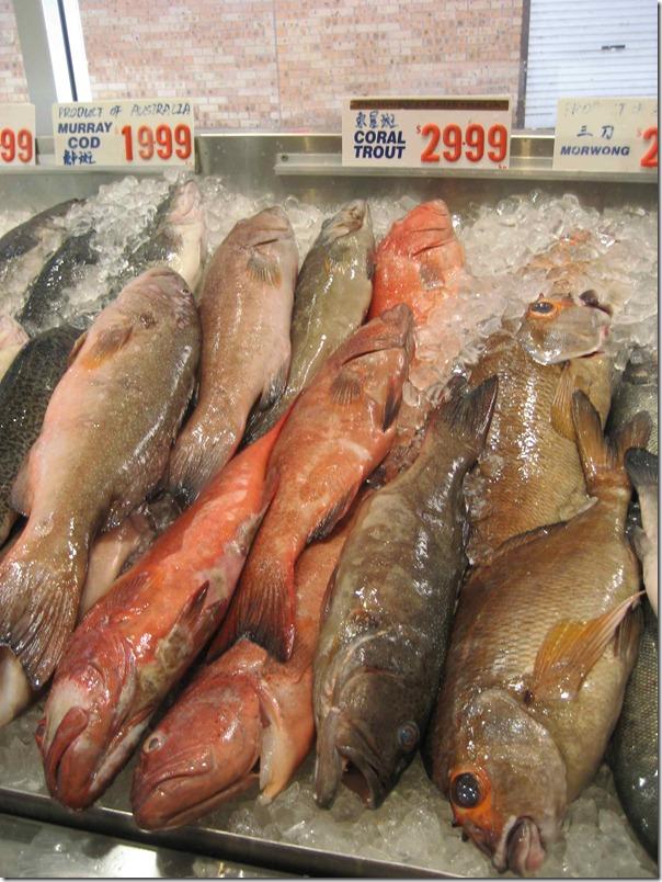Coral trout $29.99 per kg