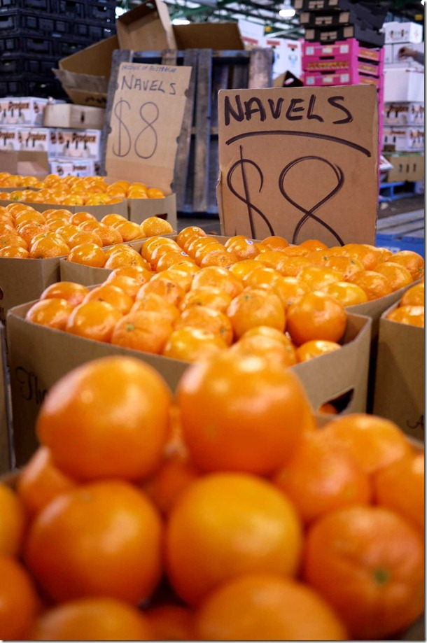 Navel oranges $8 per box