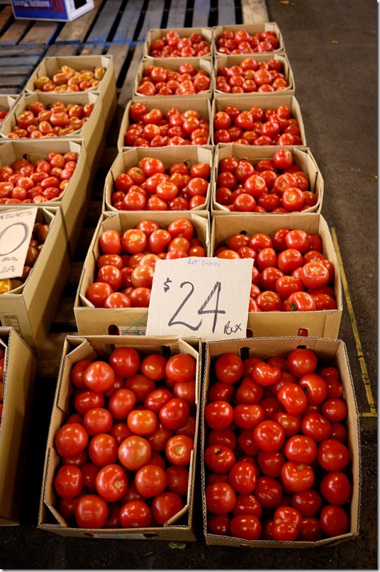 Tomatoes $24 per box