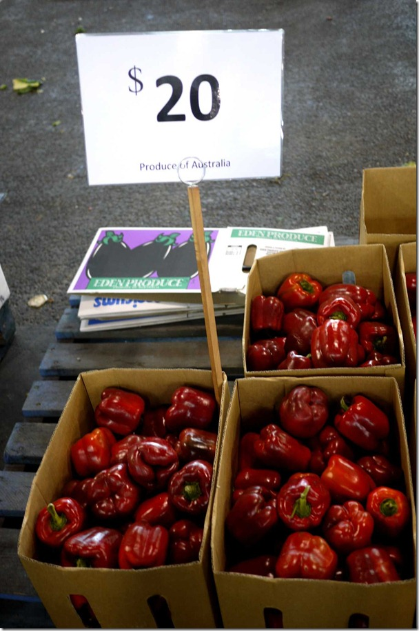 Red capsicum $20 per box