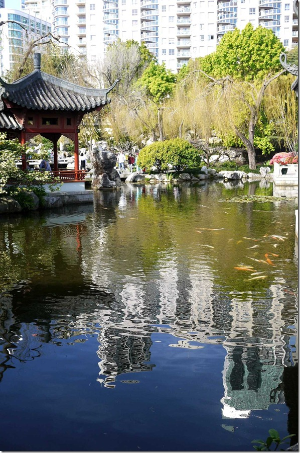 Chinese Garden of Friendship, Sydney