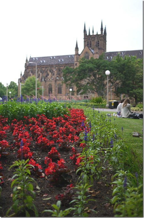 Hyde Park and St Mary's Cathedral