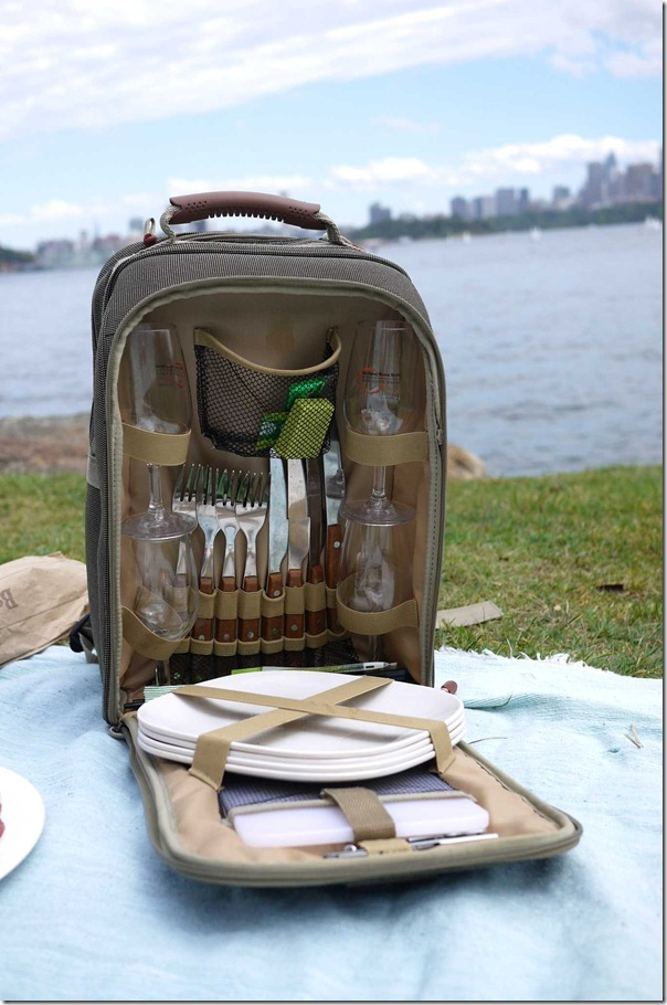 Tools of the trade for a good picnic