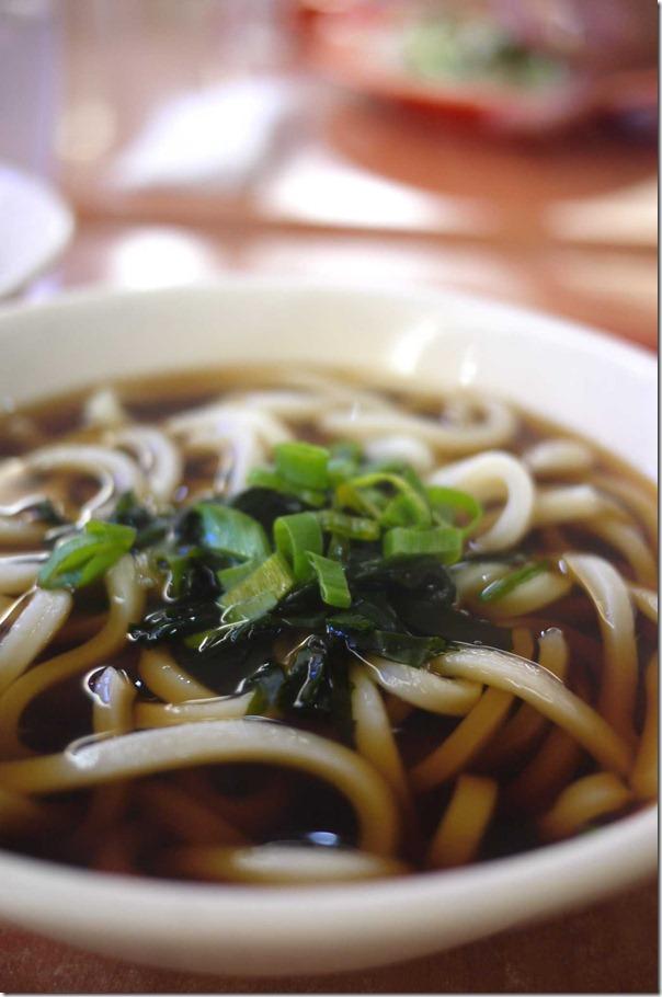 Japanese udon noodles
