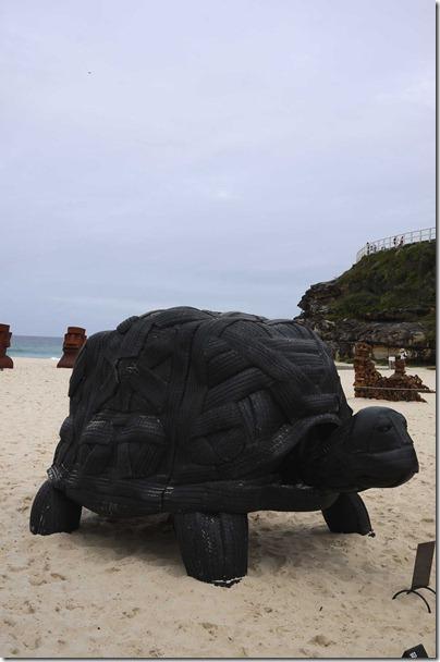 Mark Swartz, Reuben Solomon & Charmaine Tung, NSW, Tortoise
