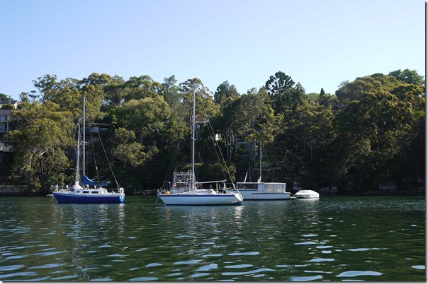 Meandering our way out of Long Bay, Cammeray