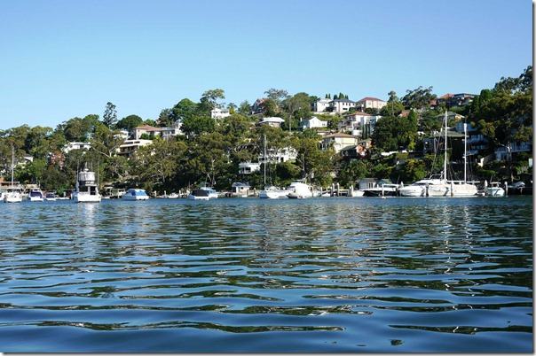Sailboats in Long Bay, Cammeray