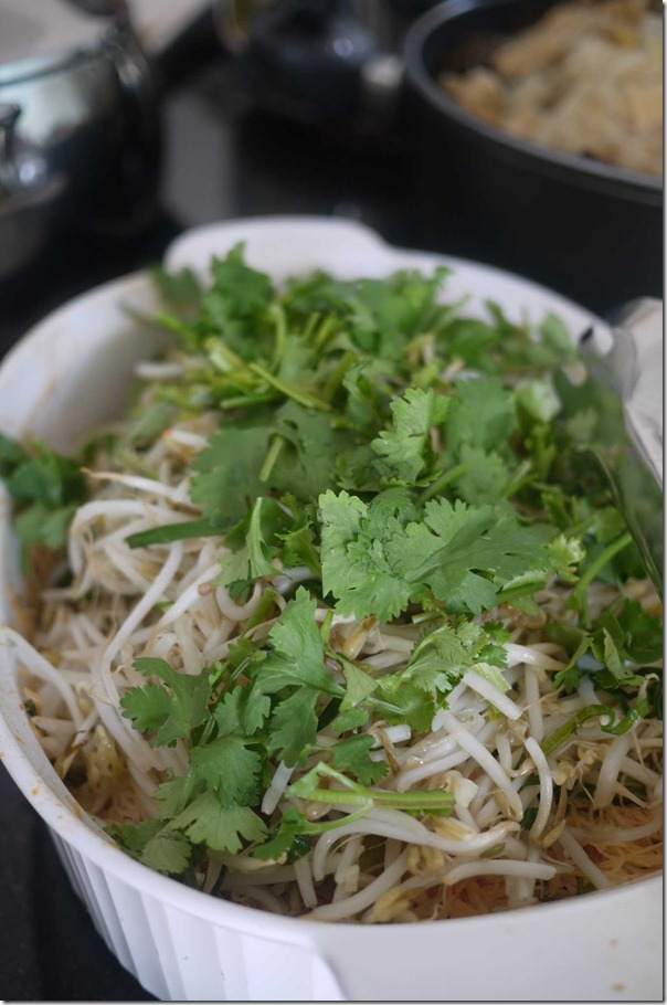 Stir fried vermicelli with beansprouts, coriander and shallots