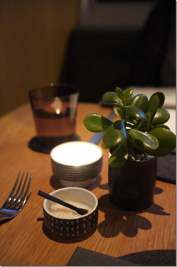 Money tree succulent, pink salt flakes and tea light