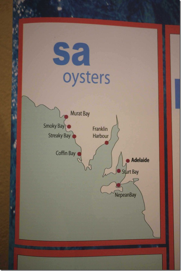South Australia's oyster farms