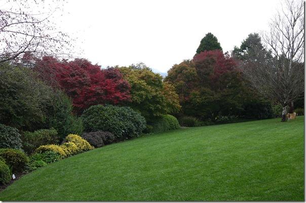 Lush green lawn, Mount Tomah Botanic Garden
