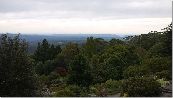 A view of the Blue Mountains from Mount Tomah Botanic Gardens