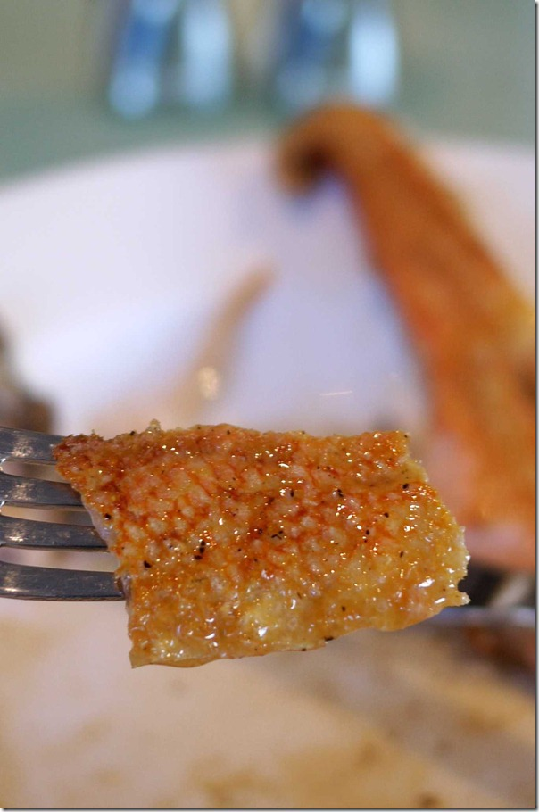 Wafer-thin and crispy salmon belly skin