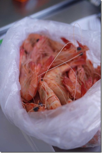 Cooked king prawns at Sydney Fish Market $18/kg