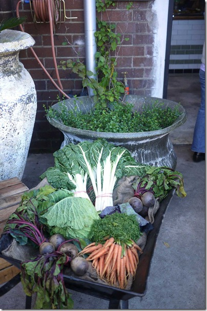 Fresh vegetables on a wheelbarrow
