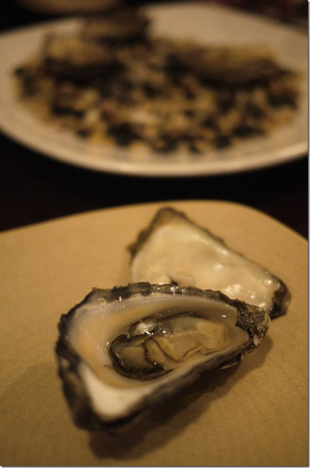 Clyde River oyster