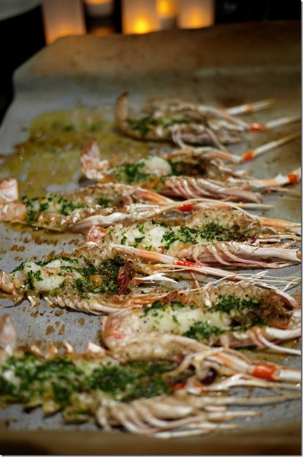 Grilled scampi with herb & garlic butter