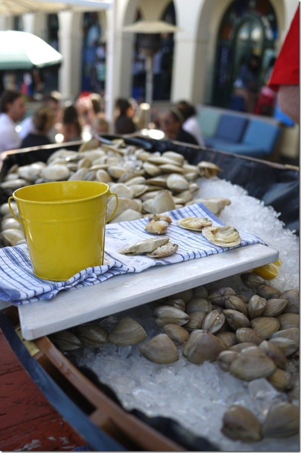 Clams counter at The Bucket List, Bondi Beach