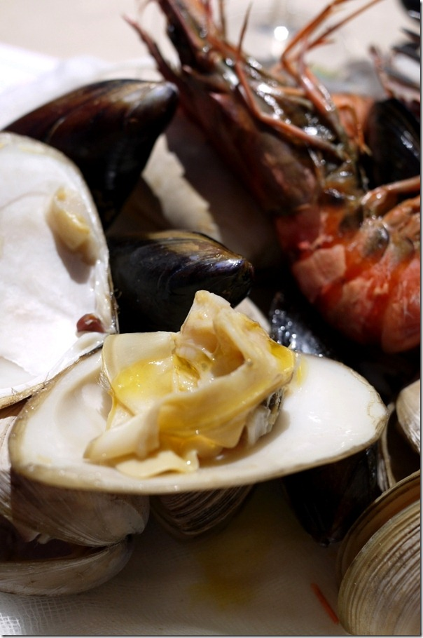 Clams, black mussels and tiger prawns