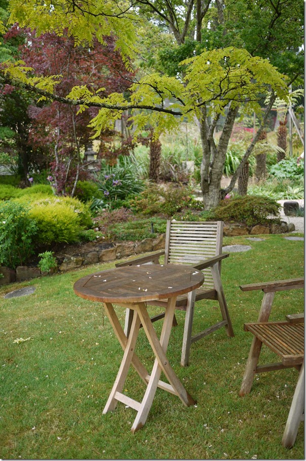 A corner in Joe's garden to reflect and contemplate
