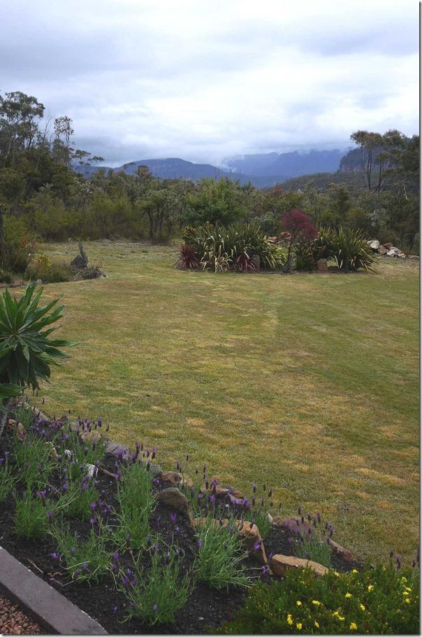 Joe's garden, Blue Mountains, New South Wales