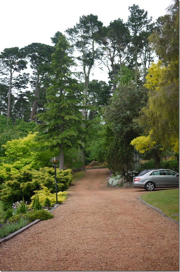 Driveway to Joe's house, Blue Mountains