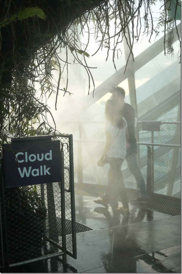 The Cloud Walk
