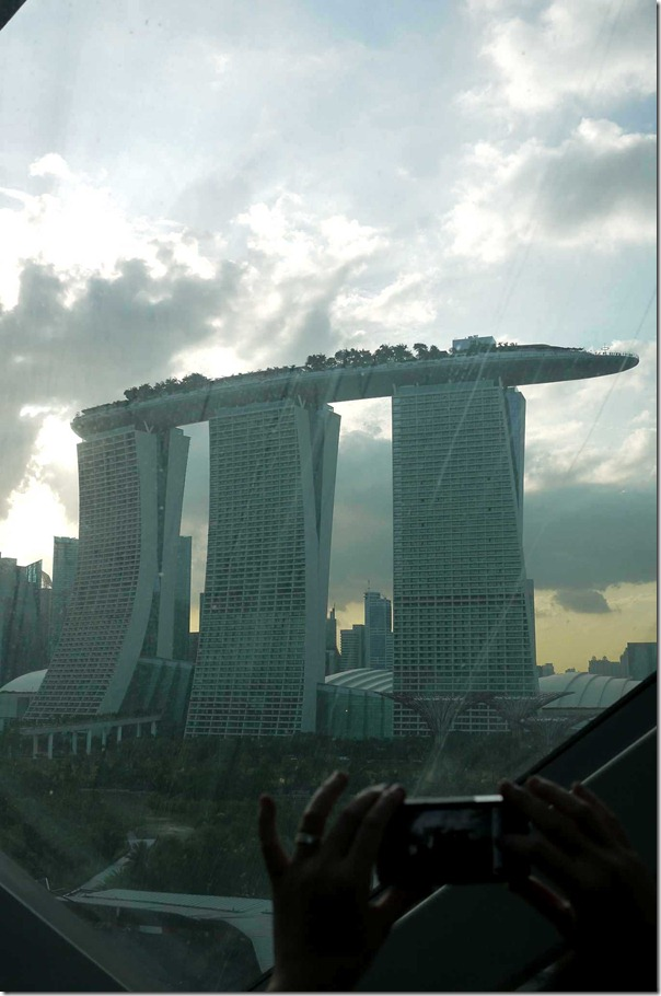 Marina Bay Sands, as seen from within the Cloud Forest dome