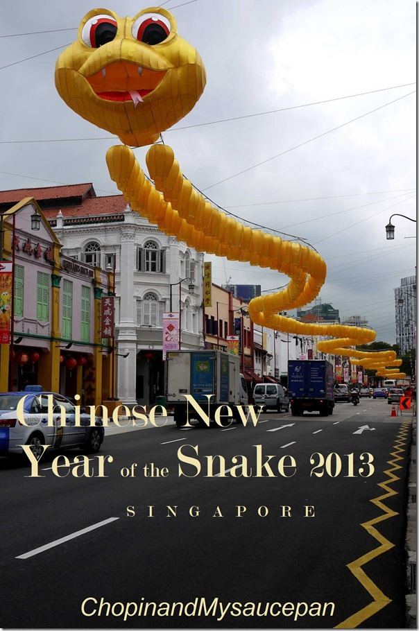 Chinese New Year of the Snake 2013 in Singapore