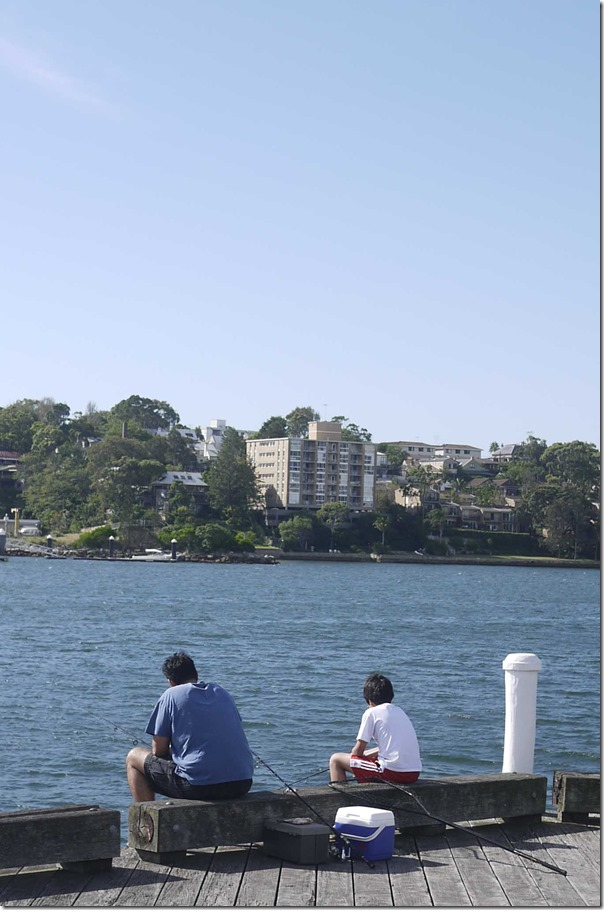 Fishing off Jones Bay Wharf, Pyrmont