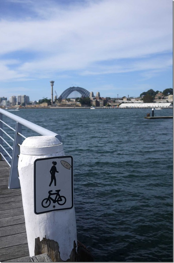 A view of Sydney harbour from Jones Bay Wharf, Pyrmont