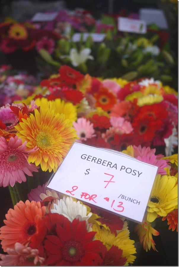 Gerbera Posy
