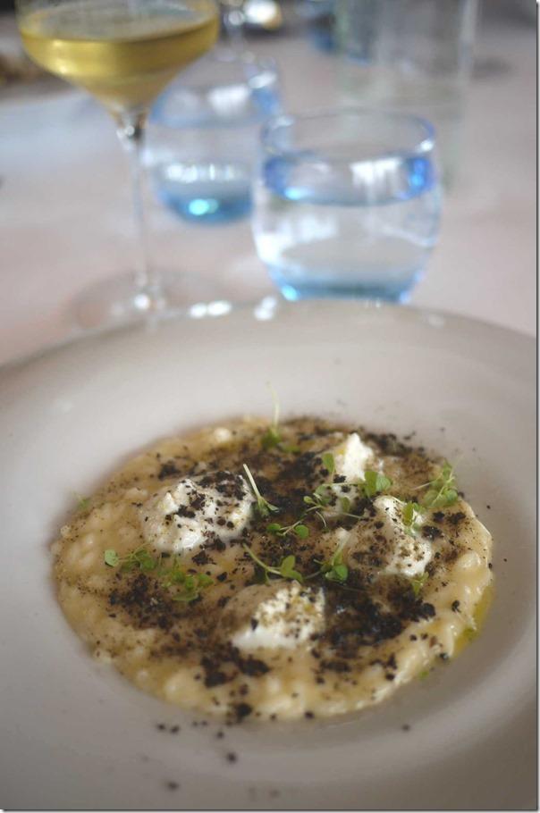 Canaroli risotto, buffalo mozzarella, tomato, capers, olives and basil