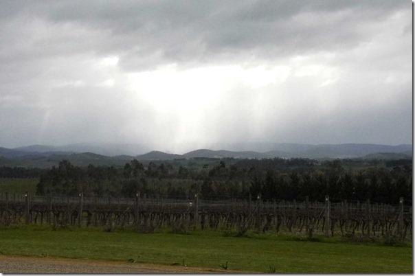 Rain in the distance ~ View from Tokar Estate, Coldstream