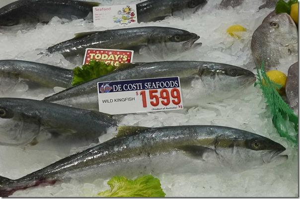 Wild yellowtail kingfish $15.99/kg