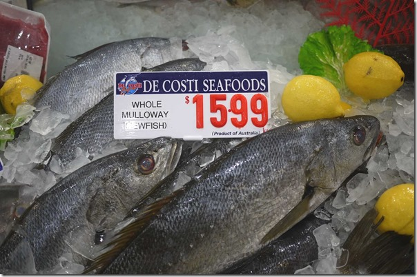 Whole Mulloway / Jewfish $15.99