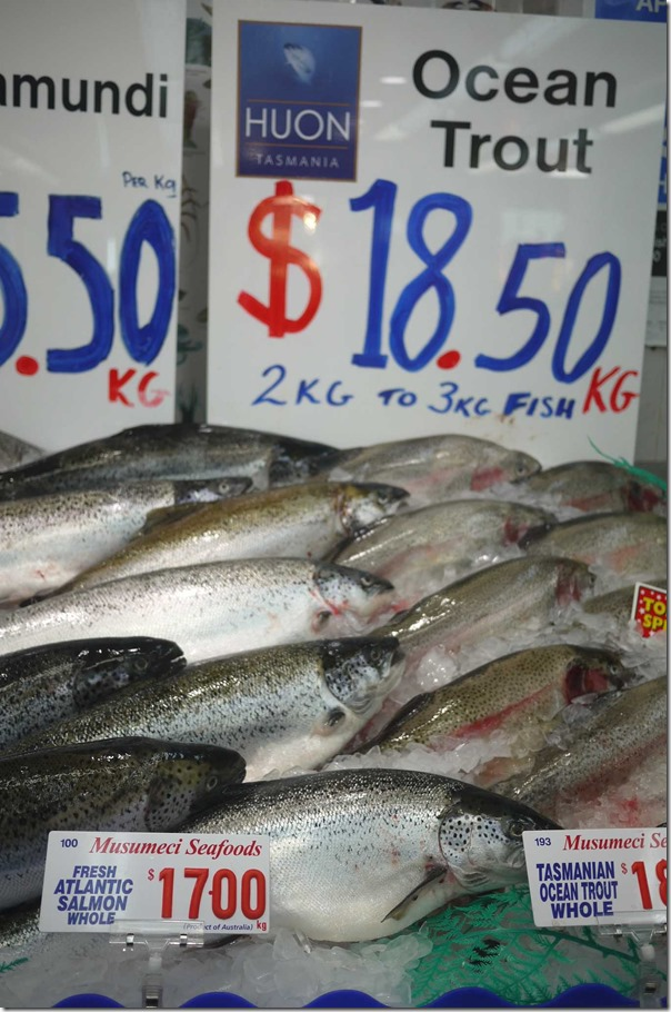 Whole ocean trout $18.50/kg