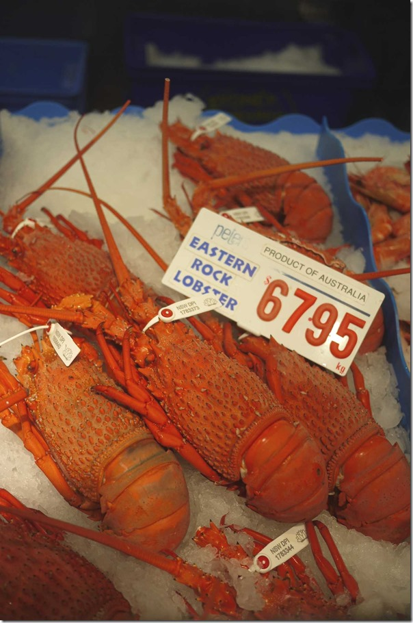 Eastern rock lobster $67.95/kg