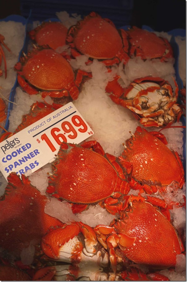 Cooked spanner crabs $16.99/kg