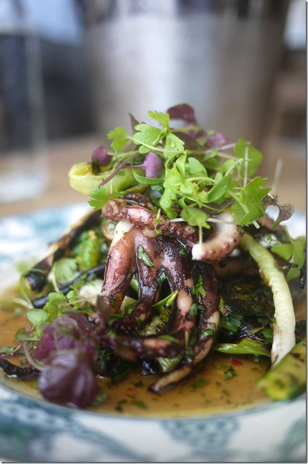 BBQ Baby octopus, zucchini flowers, spring onions, soft herbs $19