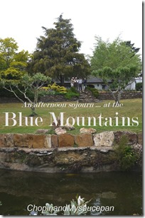 An afternoon soujourn at the Blue Mountains