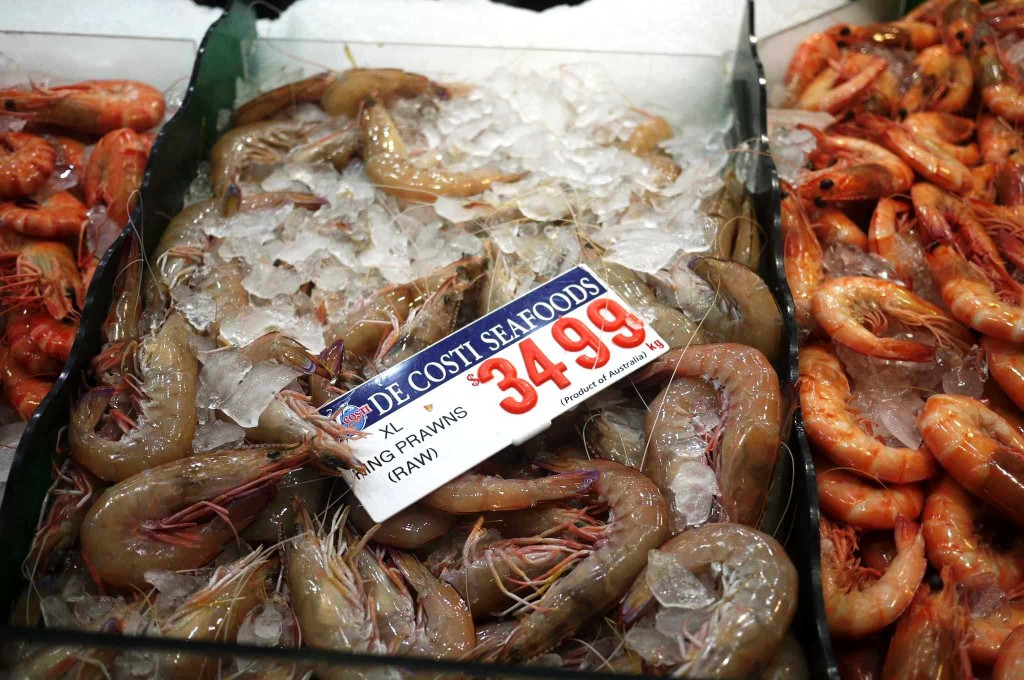 Fresh king prawns at Sydney Fish Market