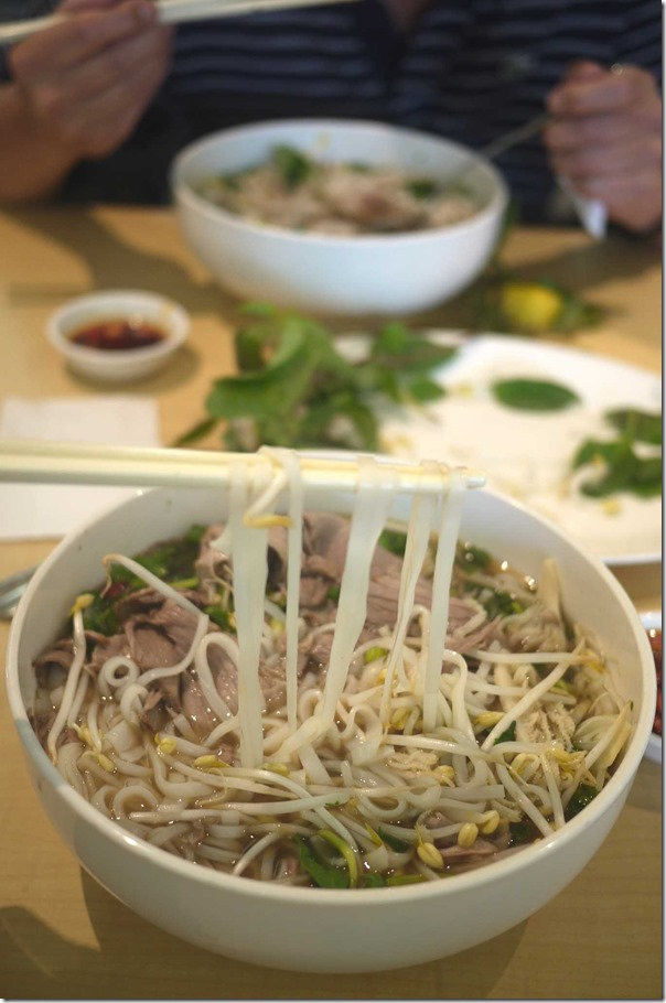 Pho with cooked beef brisket, beef tripe and tendon