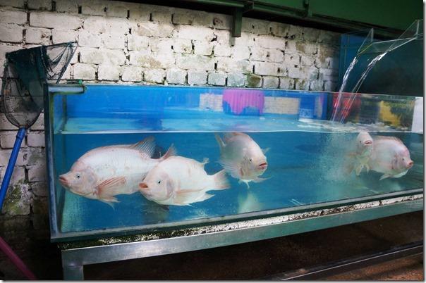 Fresh water Tilapia, Restoran Siu Siu