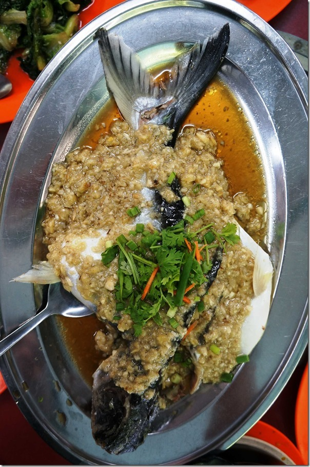 Steamed Patin fish with ginger and soy sauce